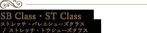 ストレッチ・バレエシューズクラス  /  ストレッチ・トウシューズクラス